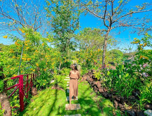 Thỏa sức vi vu đảo Lan thơ mộng