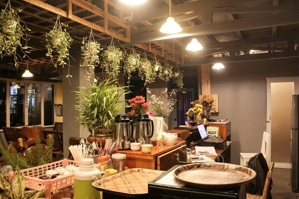 Windy Hill - Coffee & Homestay