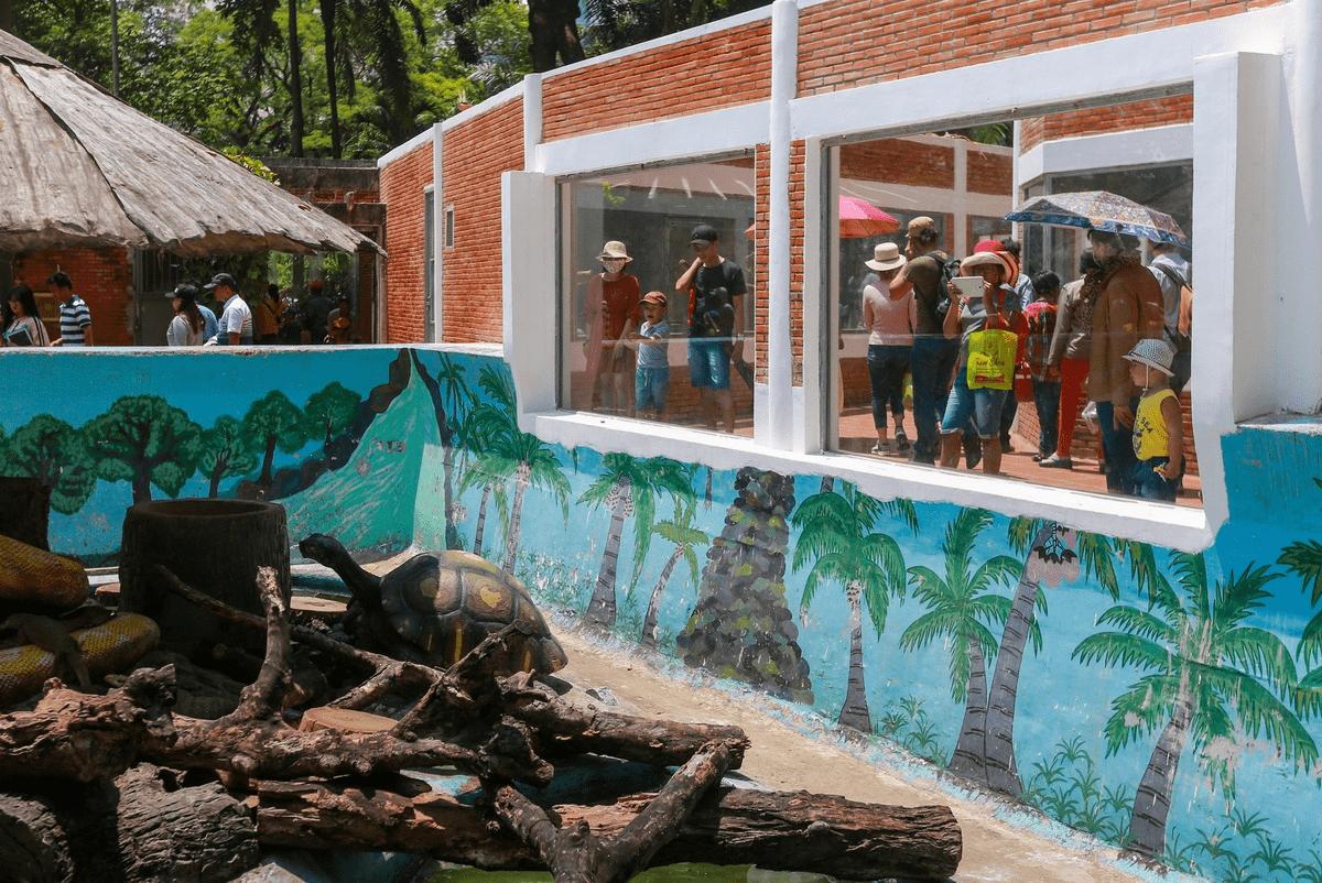Du khách nô nức tham quan vườn thú Thảo cầm viên