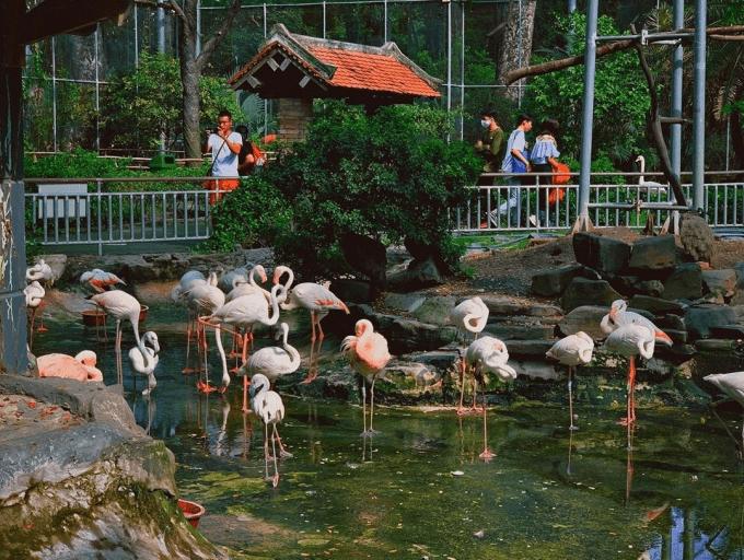 Dạo quanh vườn thú