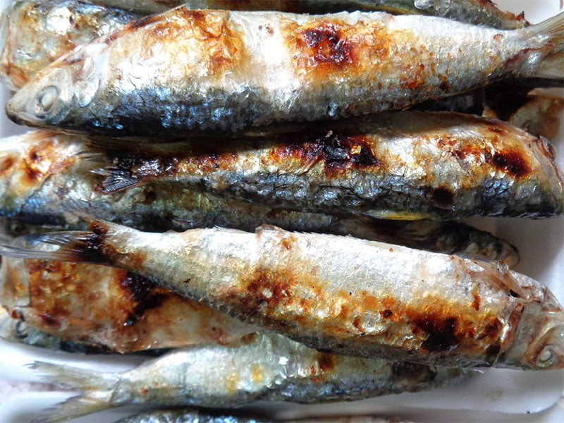 Cá trích nướng - Món ăn ngon tại Hà Tĩnh